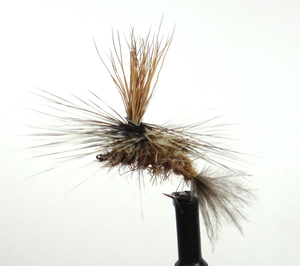 Brown Drake emerger pattern